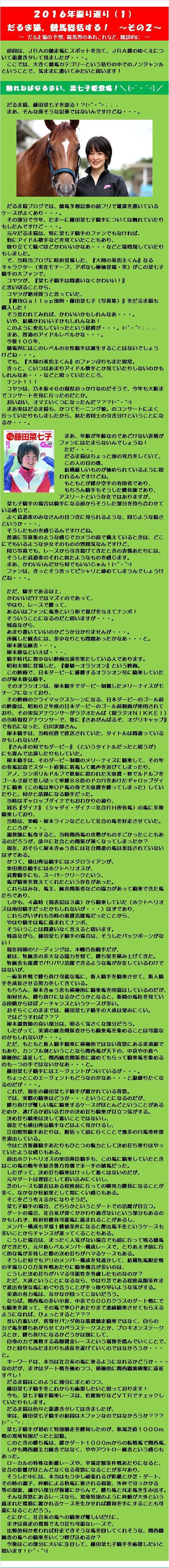 20161231・2016年振り返り ~その2~ ①.jpg